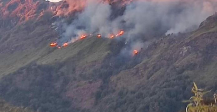 IAF choppers carry out 'Bambi Bucket' op to battle wildfire in Nagaland's Dzukou valley